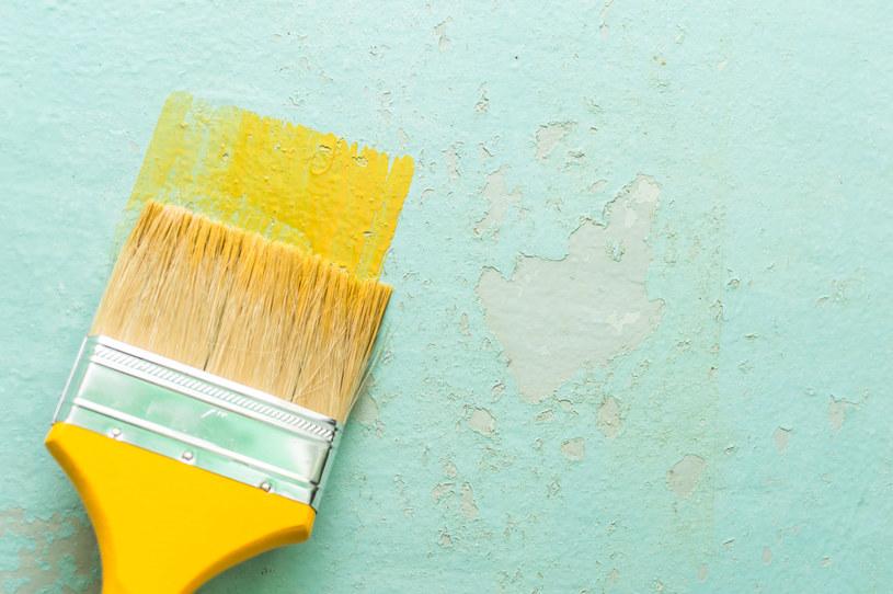 Zanim zaczniemy malowanie, musimy odpowiednio przygotować ściany /123RF/PICSEL