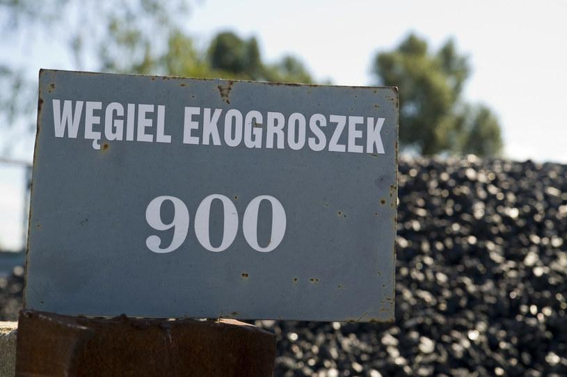 Zaostrza się spór o ekogroszek /Stanisław Bielski /Reporter