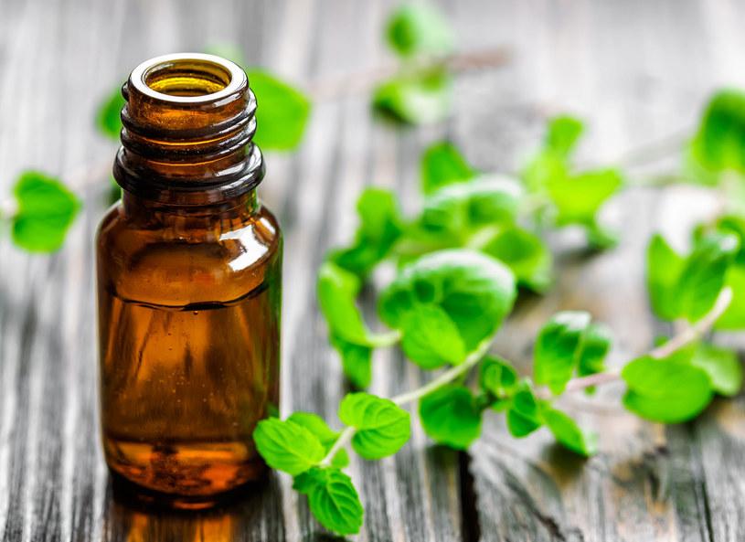 Zapach mięty zmniejsza apetyt /123RF/PICSEL