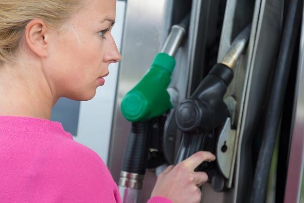 Zapadła kluczowa decyzja dla naszych kierowców! /©123RF/PICSEL