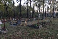 Zapomniana nekropolia w Gdyni Orłowie