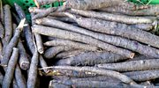 Zapomniane warzywa - pasternak, skorzonera, jarmuż