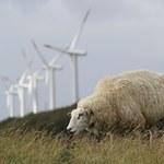 Zapowiedź raportu ONZ: Temperatura wzrośnie o 2 stopnie