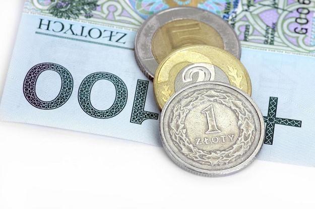Zapowiedzi rozpoczęcia cyklu obniżek stóp procentowych w dalszym ciągu osłabiają złotego /©123RF/PICSEL