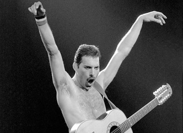 Zapuść wąsa dla Freddiego! /Universal Music Polska