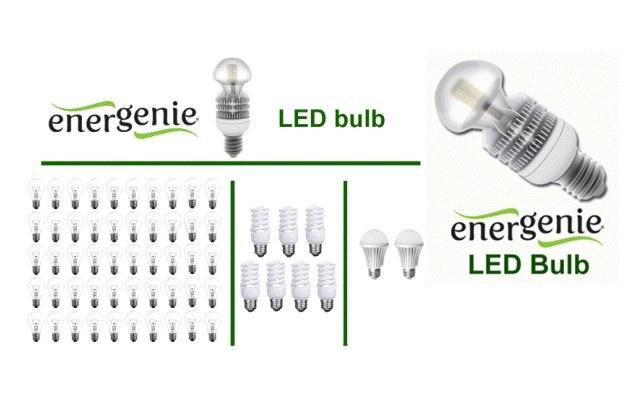 Żarówki EnerGenie LED /materiały prasowe