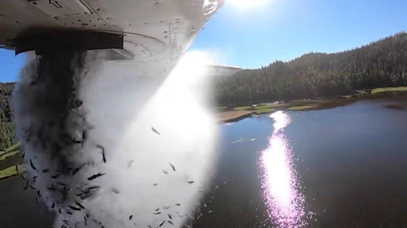 Zarybiane jezior z samolotu /Utah Division of Wildlife Resources /facebook.com