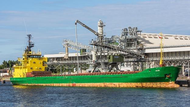 Zarządzanie statkami (ship management) to w Polsce branża stosunkowo nowa /©123RF/PICSEL