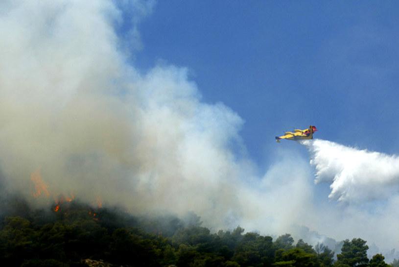 Zarzewia ognia powstały w wyniku wysokiej temperatury utrzymującej się w Grecji. /AFP