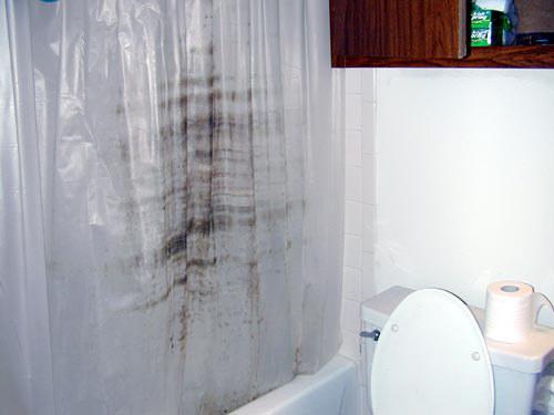 zasłona prysznicowa pleśń /© Photogenica