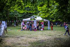 Zatrać się w zieleni, czyli piknikowanie po krakowsku!