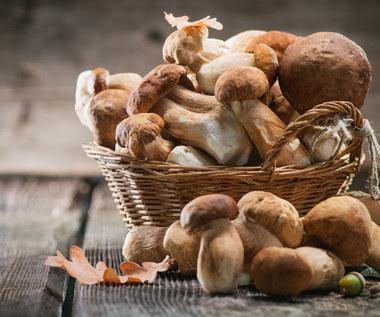 Zatrucie grzybami: Objawy i pierwsza pomoc