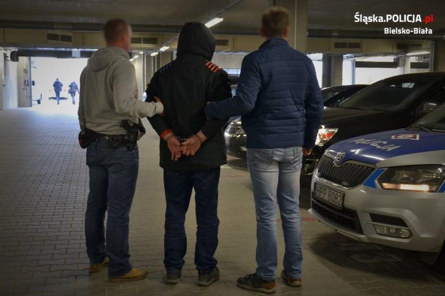 Zatrzymanie podejrzanych /Śląska policja /Policja