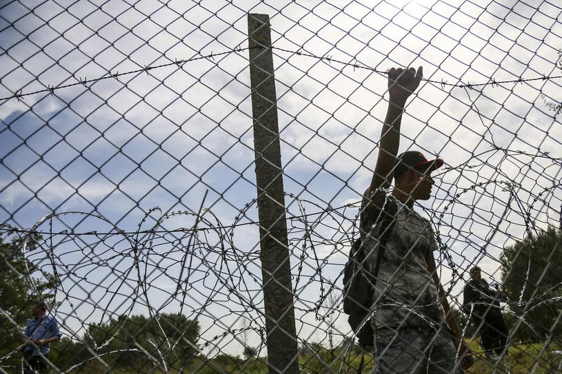 Zatrzymano czterech obywateli Iraku na granicy Polski i Białorusi. /Beata Zawrzel /East News