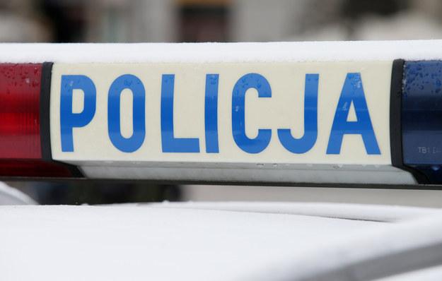 Zatrzymano pijanego pirata drogowego, który próbował potrącić policjanta /Damian Klamka /East News