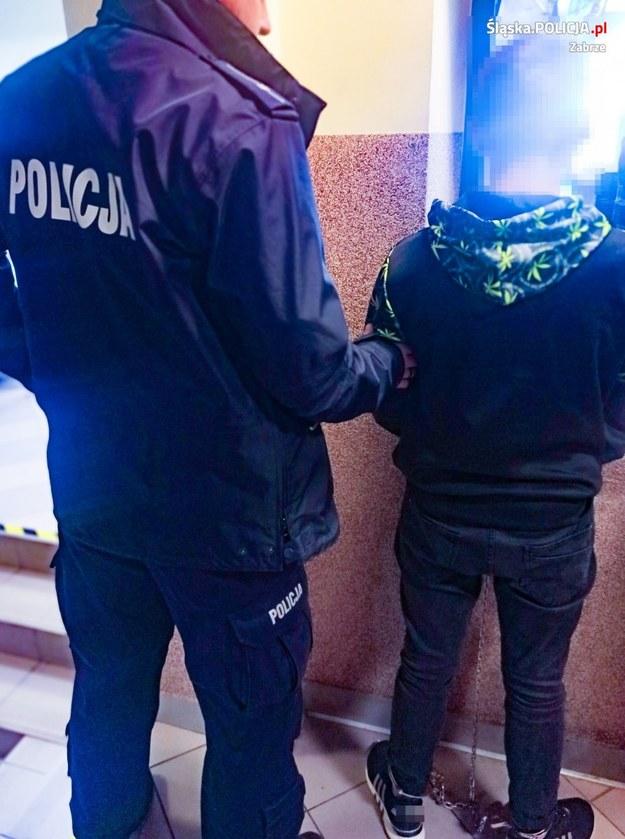 Zatrzymany 18-latek /Policja