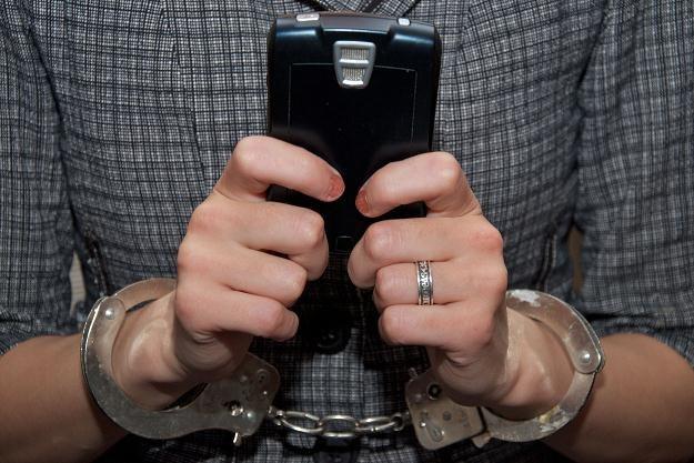 Zatrzymanym grozi do ośmiu lat więzienia /123RF/PICSEL