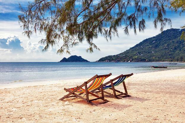 Zawieszenie firmy podczas urlopu pozwala zaoszczędzić tysiąc złotych miesięcznie /©123RF/PICSEL
