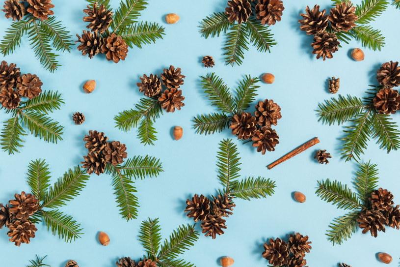 Zawieszki z szyszek i iglastych gałązek można położyć na stole lub ozdobić nimi świeczki /123RF/PICSEL