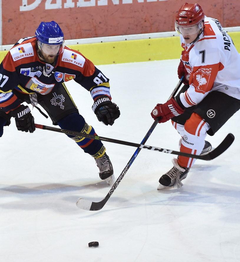 Zawodnik Comarch Cracovii Oliver Paczkowski (P) podczas meczu z TatrySki Podhalem Nowy Targ /Jacek Bednarczyk /PAP