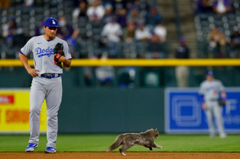 Zawodnik ekipy LA Dodgers i kot /Justin Edmonds /Getty Images