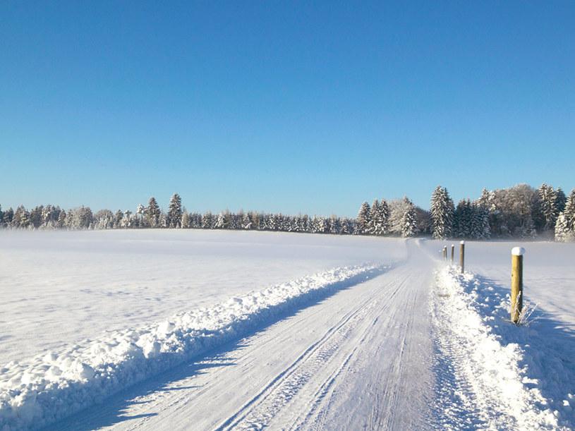 Zawsze należy dostosowywać prędkość do konkretnych warunków na drodze.  /© Bauer