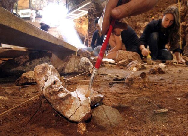 Zazwyczaj wykopaliska przynoszą wiele nowych odkryć Fot. AFP/EAST NEWS /East News