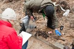 Zbezcześcili szczątki niemieckich żołnierzy