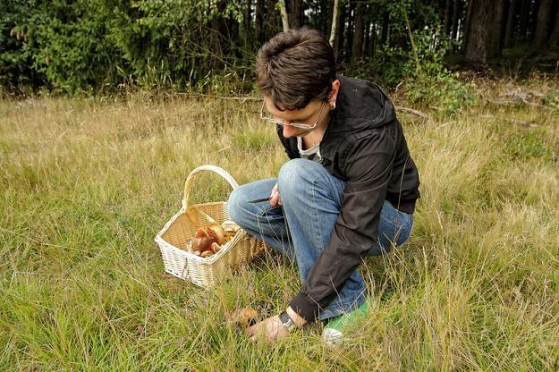 Zbierając grzyby i jagody osobiście uzyskamy nieopodatkowane dochody /© Panthermedia