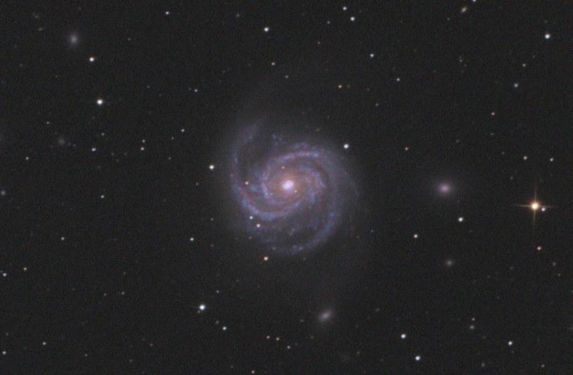 Zbliżenie na galaktykę M100 i supernową SN 2019ehk / Fot: Maciej Jarmoc /Kosmonauta