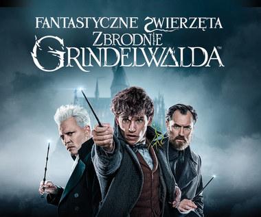 Zbrodnie Grindelwalda już od 13 marca