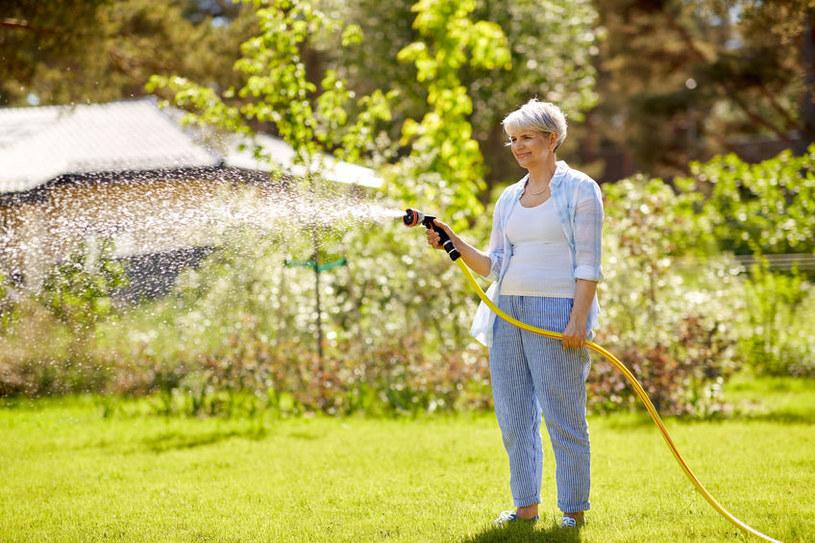 Zbyt silny strumień wody może uszkodzić rośliny /123RF/PICSEL