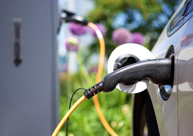 Zbyt wolno przybywa w naszym kraju stacji ładowania pojazdów elektrycznych /©123RF/PICSEL