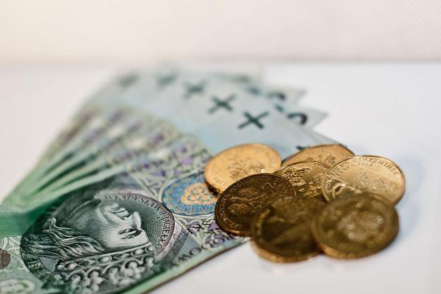 Zdaniem ekonomistów, przedział wahań dla polskiej waluty nie powinien być szeroki /©123RF/PICSEL