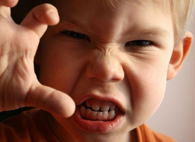 Zdarza się, że dziecko wyraża emocje krzywdząc i obrażając innych /© Panthermedia