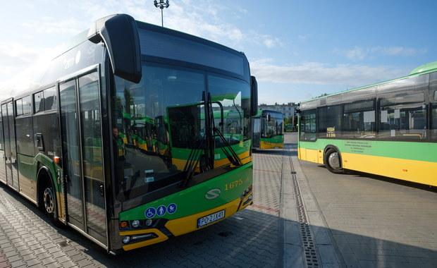 Zderzenie autobusów miejskich w Poznaniu. Jedna osoba jest poszkodowana