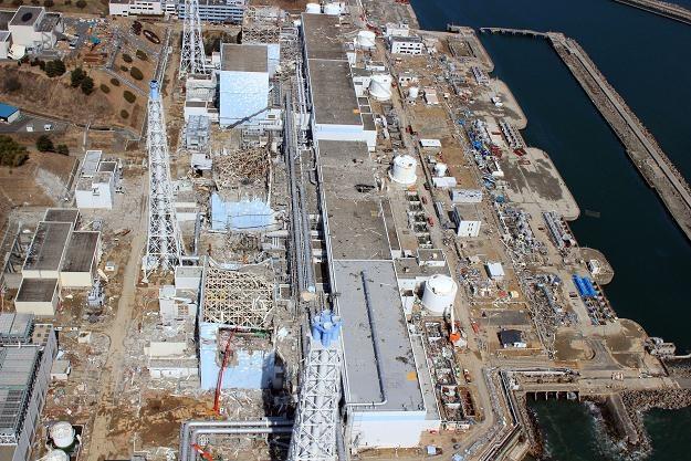 Zdewastowane tereny elektrowni Fukushima /AFP