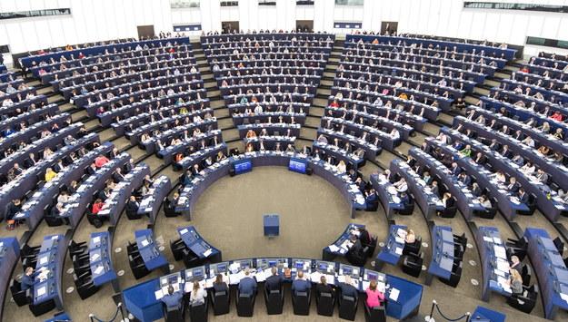 PE chce zakazu działalności grup neofaszystowskich w UE