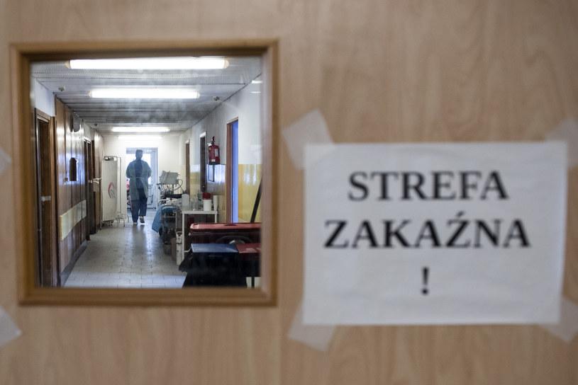 Zdj. ilustracyjne /Filip Błażejowski /Agencja FORUM