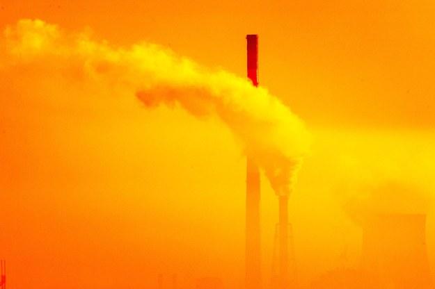 Smog może sprzyjać transmisji koronawirusa