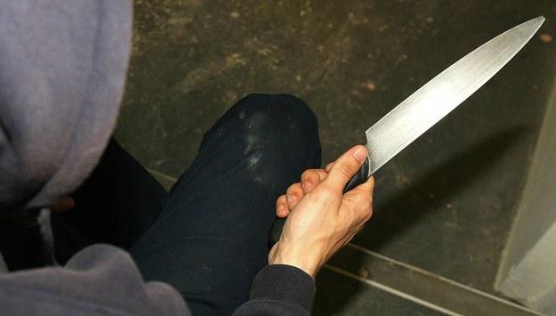 Zadźgał kolegę, zwłoki zawinął w dywan i zakopał w lesie w Aninie. 34-latek zatrzymany