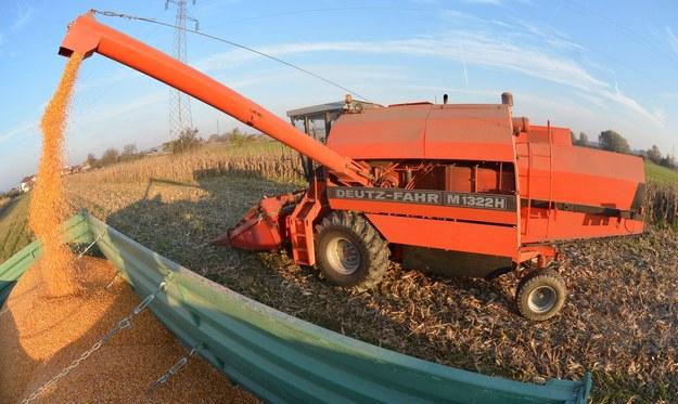 Bogusławice. Maszyna do młócenia kukurydzy wciągnęła ręce rolnika