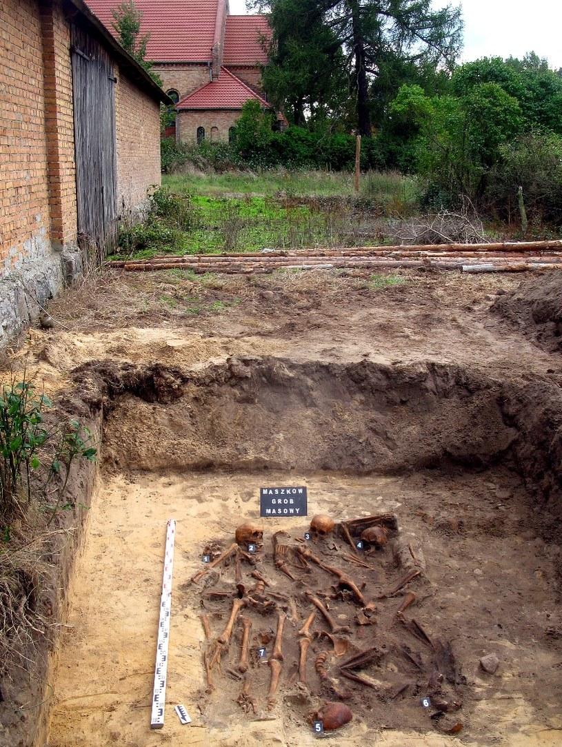 Zdjęcia: arch. Pracowni Badań Historycznych i Archeologicznych Pomost z Poznania/Grób został wykopany bezpośrednio za budynkiem gospodarczym. W tle kościół poewangelicki w Maszkowie /Odkrywca