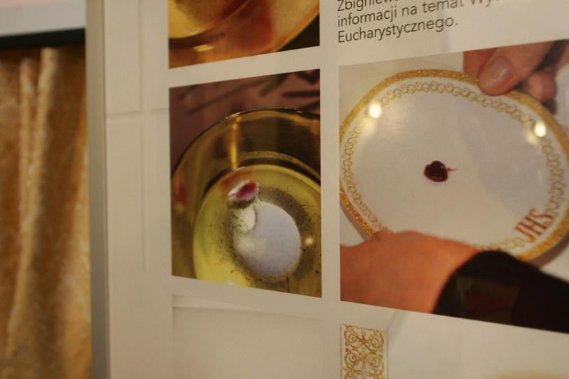 Zdjęcia dokumentujące cud eucharystyczny w  Legnicy /Piotr Krzyżanowski /East News