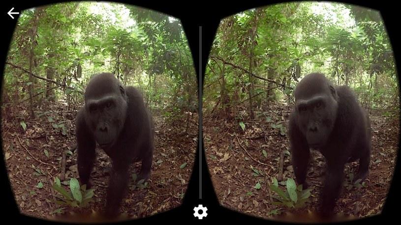 Zdjęcia sferyczne to sposób na przeniesienie sie, dosłownie, do wykonanej kiedyś przez nas fotografii /materiały prasowe