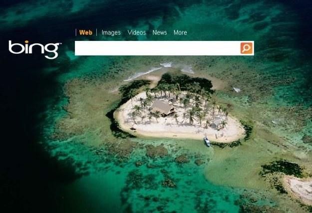 Zdjęcia towarzyszące wyszukiwarce Bing już stały się kultowe. Inne funkcje także /Internet