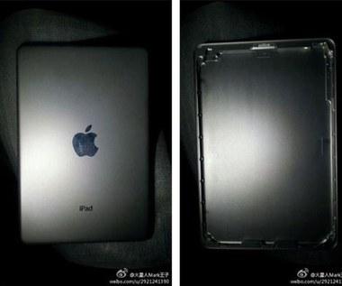 Zdjęcia tylnego panelu 7-calowego iPada mini