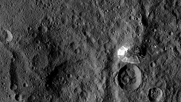 Zdjęcie Ceres wykonane 19 sierpnia 2015 roku z wysokości 1470 km. Po prawej widać wznoszącą się na 6 km stożkową górę  Ahuna Mons /NASA/JPL-Caltech/UCLA/MPS/DLR/IDA /materiały prasowe