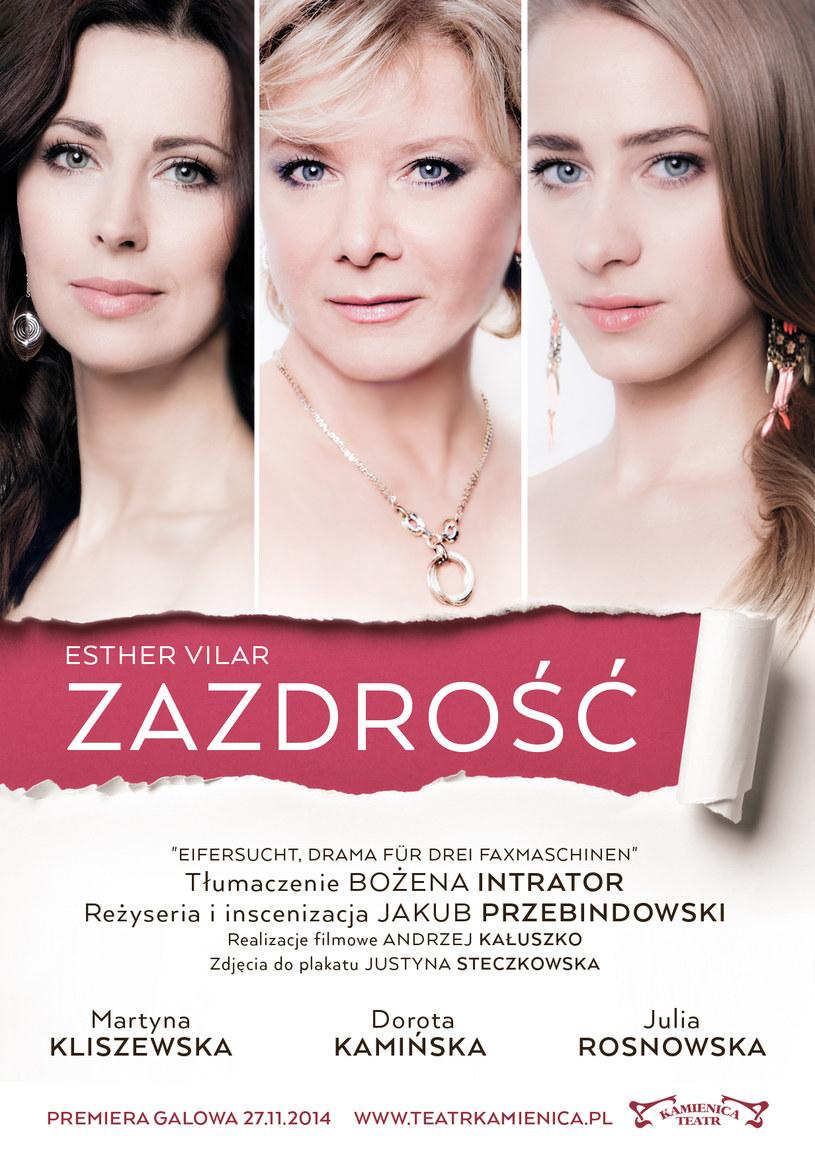 Zdjęcie do plakatu przygotowała Justyna Steczkowska /materiały prasowe