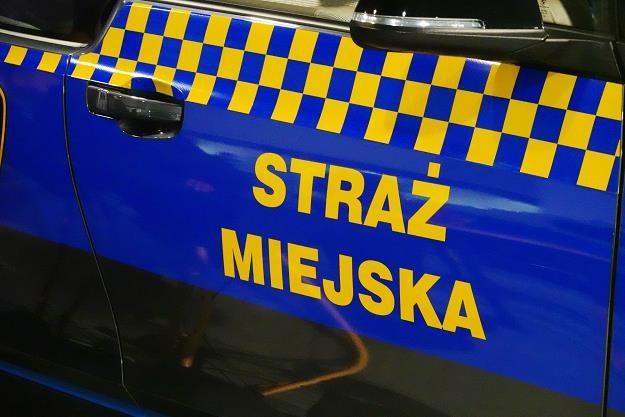 Zdjęcie ilustracyjne /fot. Wojtek Laski /East News